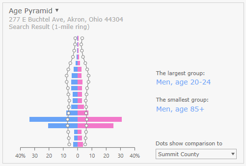 Distribuzione per età in prossimità di un campus universitario americano (fonte: doc.arcgis.com).